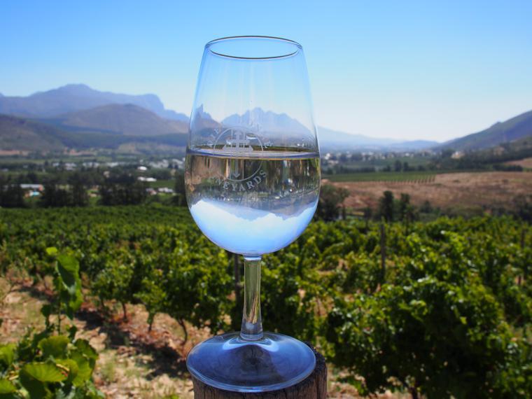 Stellenbosch-wine