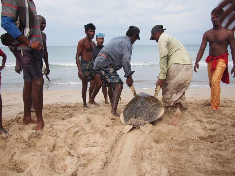 26.Sri-Lanka-Uppuveli
