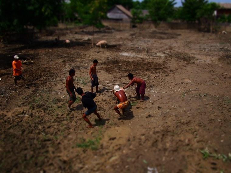 16.Myanmar_Bagan_to_Mandalay_slow_boat_Life_on_the_Ayeyarwaddy_River_loading_pigs
