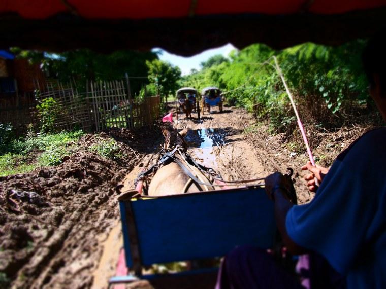 36.Myanmar_Mandalay_Inwa(Ava)_horse_cart_mud