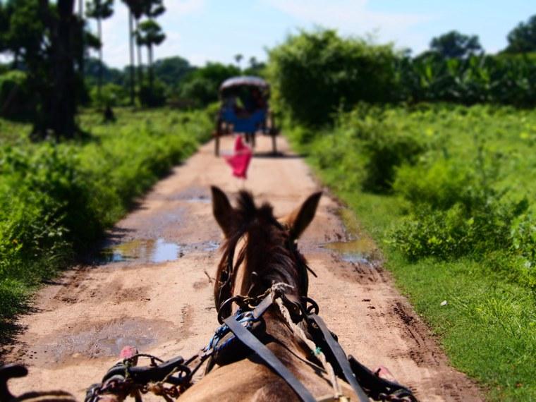 40.Myanmar_Mandalay_Inwa(Ava)_horse_cart