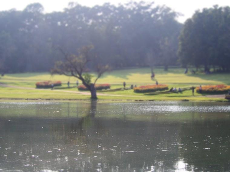 14.Myanmar_Pyin_Oo_Lwin_Botanical_Gardens